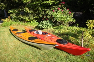 My mango coloured Eliza kayak sitting on my front lawn beside my Fire coloured Necky kayak.