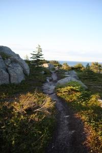 East Coast Trail ~ St, John's Newfoundland