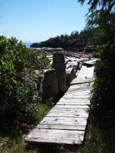 Whalebone Bay Nelson Island